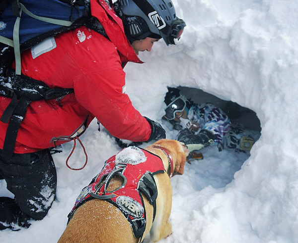 avalanche-rescue-dogs-05-dog-hole-01
